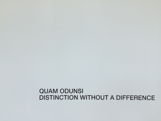 Quam Odunsi - Distinction without a Differe nce - IMG_4830