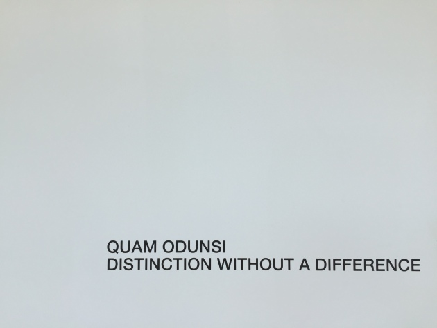 Quam Odunsi - Distinction without a Difference - IMG_4830